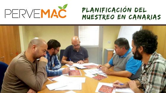 Planificación del muestreo en Canarias Pervemac2