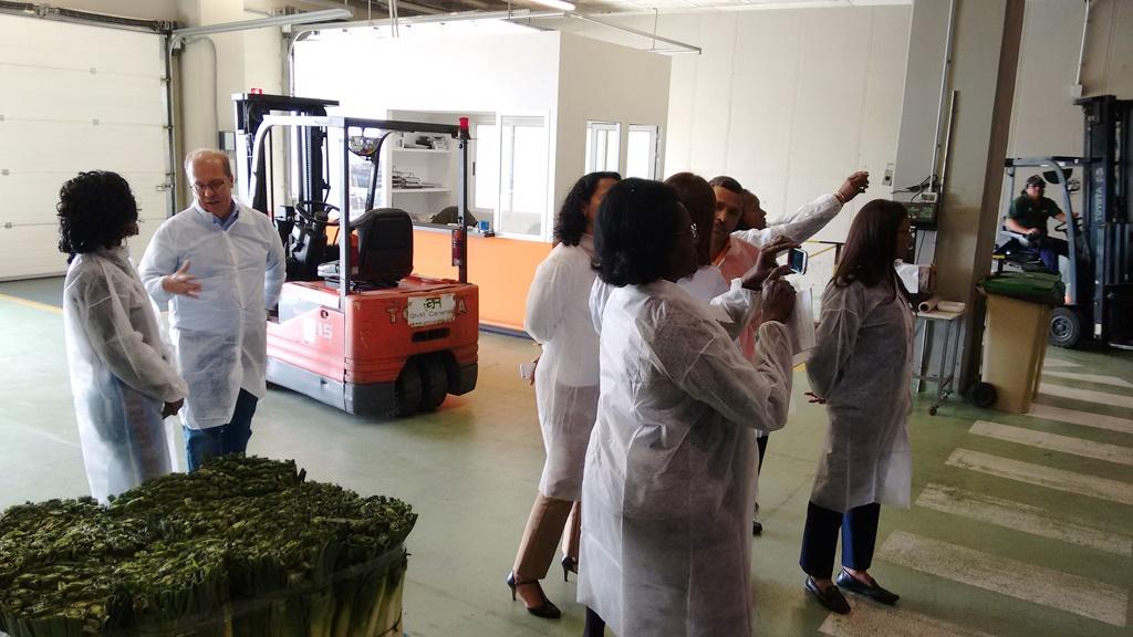 visita institucional delegación cabo verde a tenerife