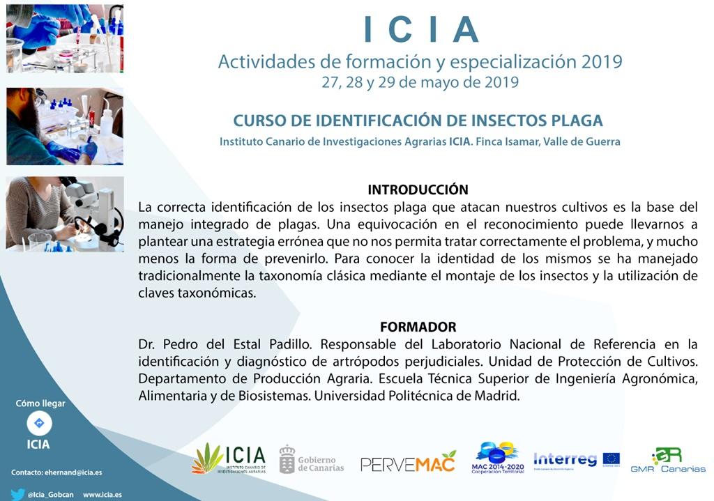 Curso de Identificación de Insectos Plaga