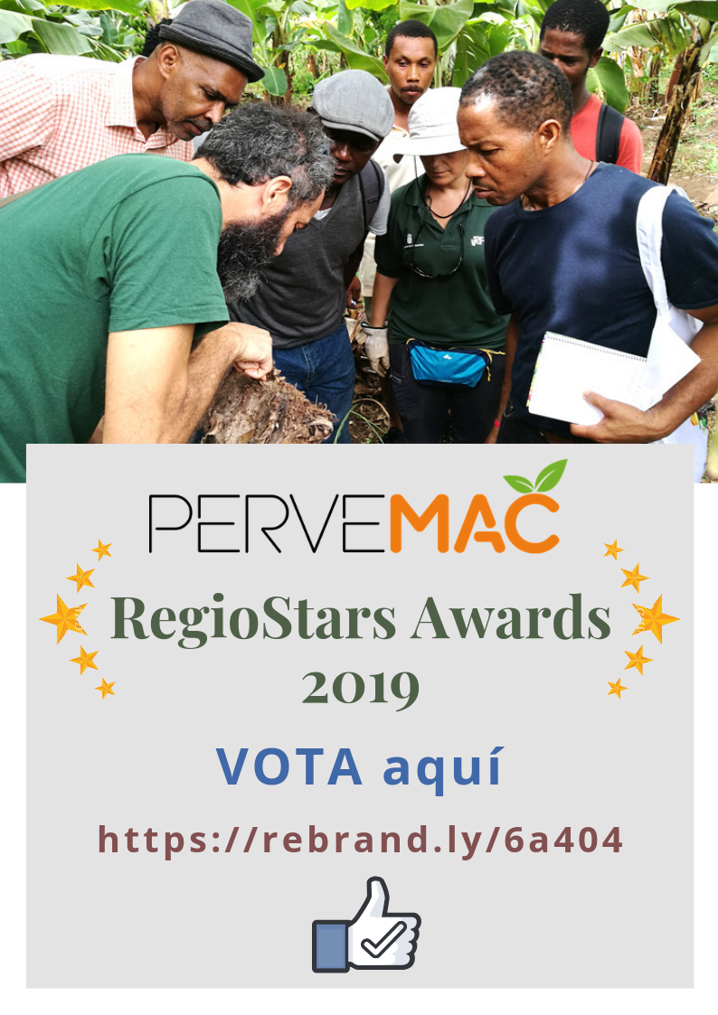 RegioStars Awards 2019_Vote