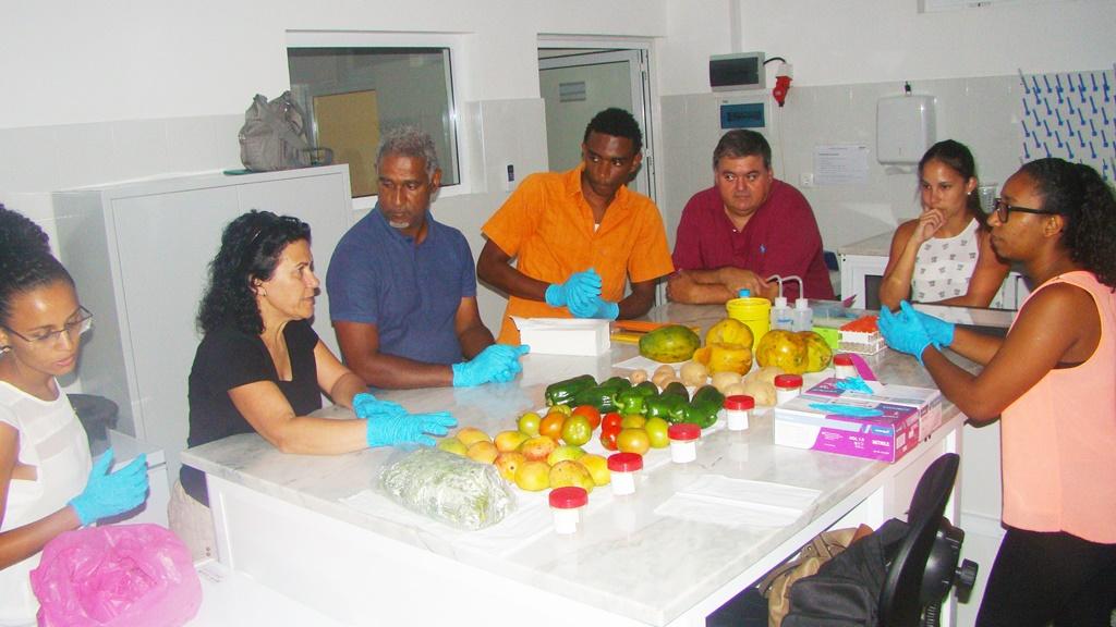 Seminario Monitorización en Cabo Verde