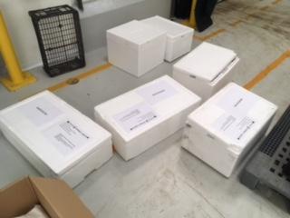 açores cajas2
