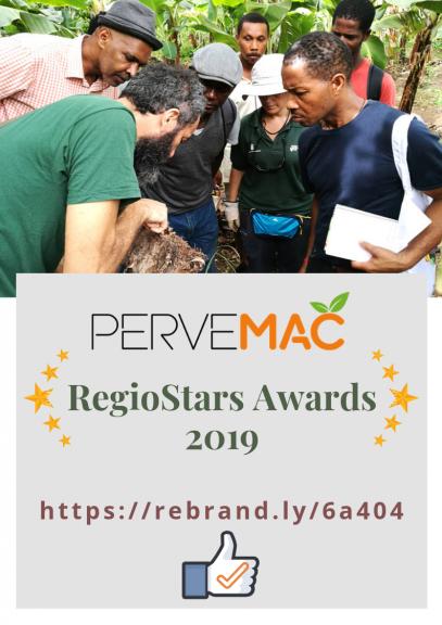 RegioStars Awards 2019